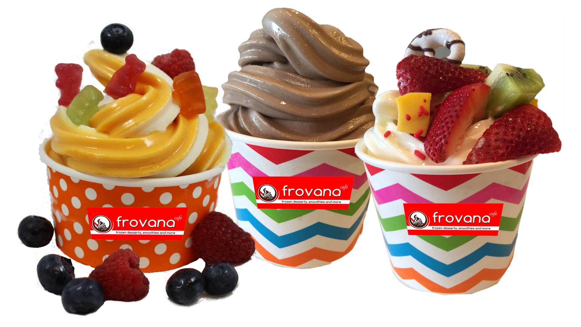 Frozen Yogurt (froyo)